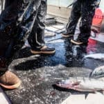 7 Most Comfortable Commercial Fishing Boots Ever