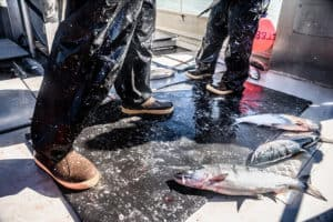 Read more about the article 7 Most Comfortable Commercial Fishing Boots Ever