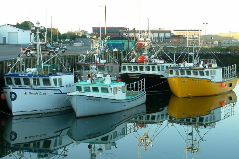 Types of Boats – Full List of 20 Different Types