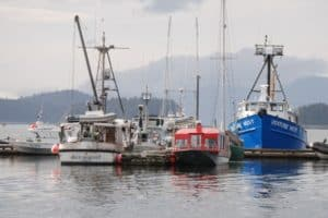 Read more about the article Types of Fishing Boats – Recreational and Commercial