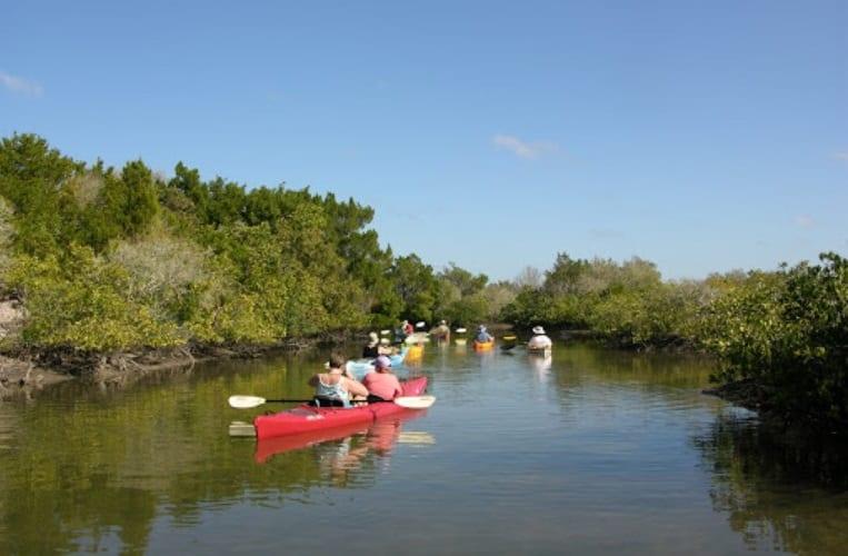 great kayaking places in florida