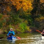 Canoe in Illinois [Best 16 Places for Canoeing in Illinois]