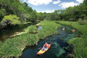 Kayaking in Florida [10 Best Places]