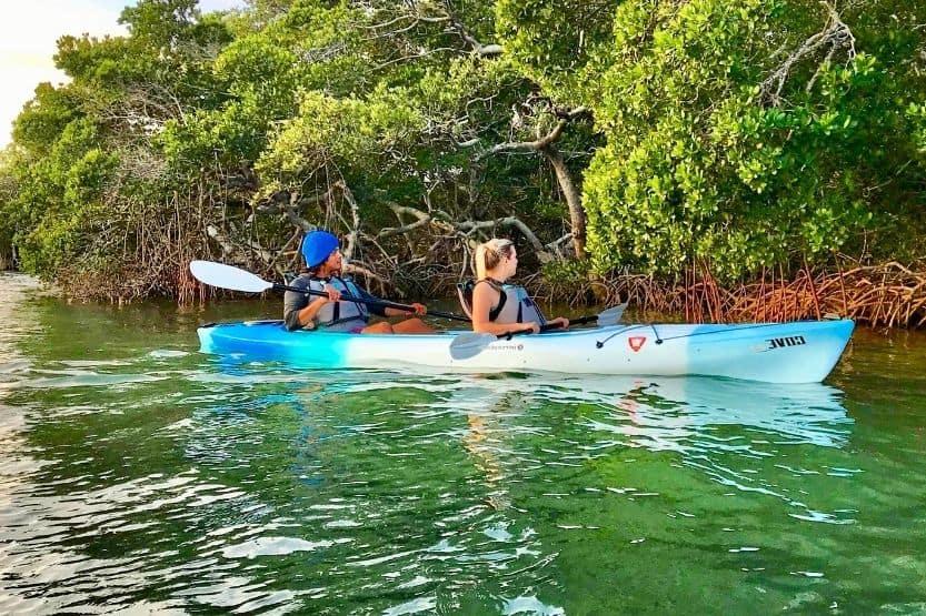 kayaking in tampa bay