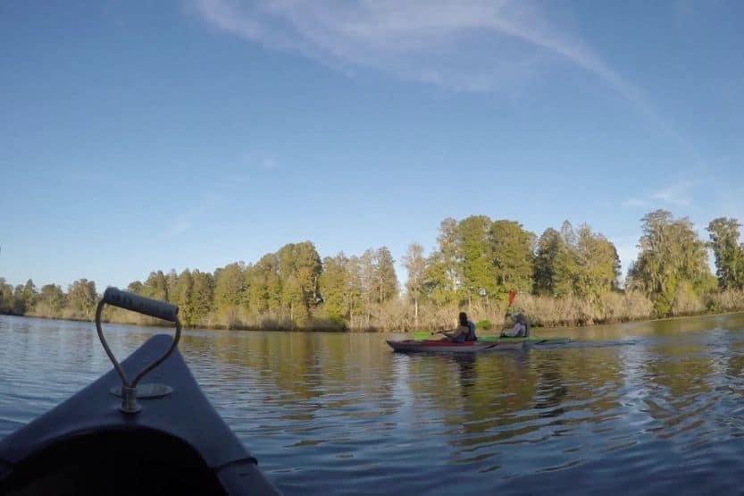 kayaking in tampa florida