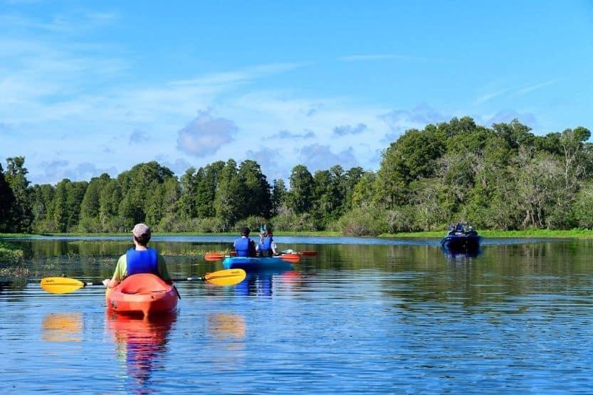 kayaking tampa bay
