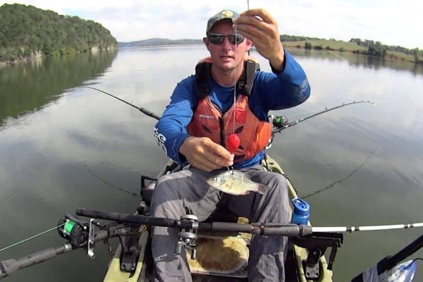 knocker rig for fishing