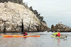 Kayak in Long Beach [11 Best Places for Kayaking in Long Beach]