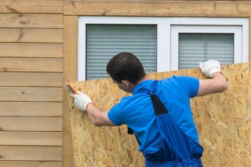 acx vs bcx plywood